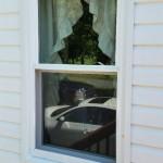 Close up of new window 2